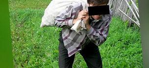 Наглый сосед тащит мешок